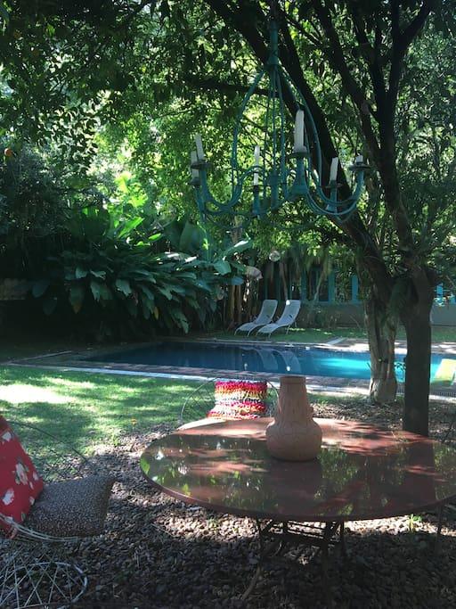 vista da varanda para o jardim
