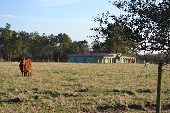 Red Angus Ranch - Lumberton - บ้าน