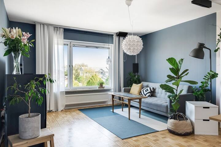 Room in Modern Apartment + Bikes