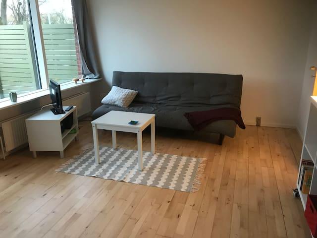 Hyggelig stor 1 værelses tæt på Aarhus C