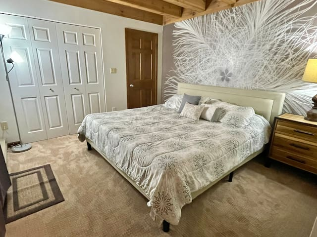 Bedroom with King Bed & Closet
