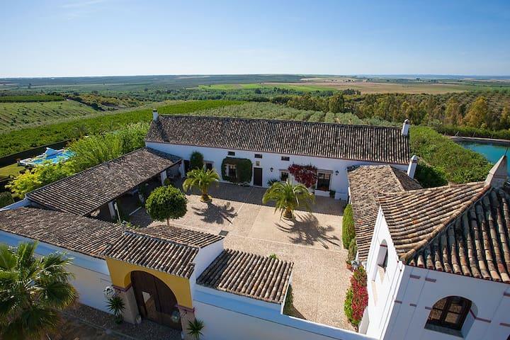 Hacienda Andaluza Las Marciagas - Aznalcázar - 별장/타운하우스