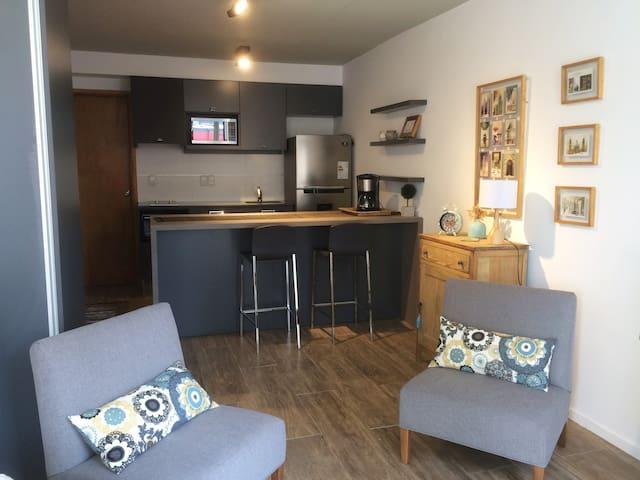 Cozy design-studio with great location - Montevideo - Appartement en résidence