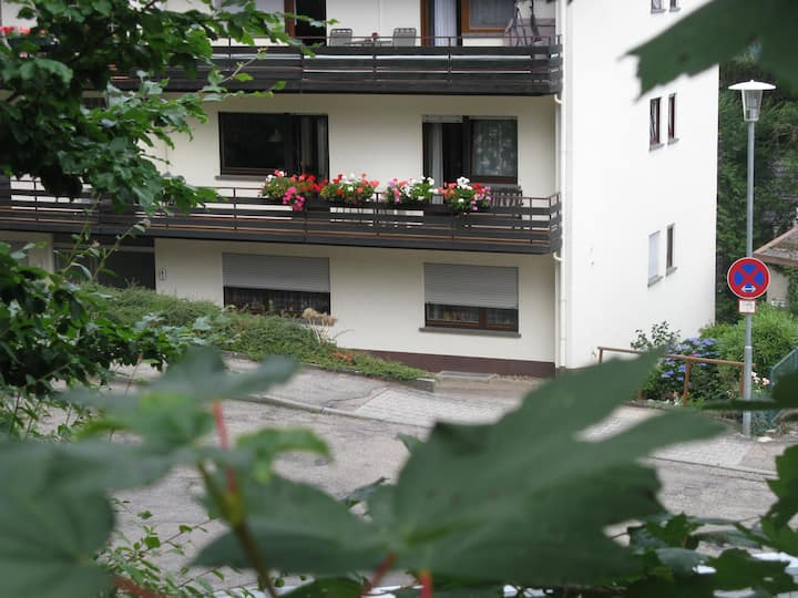 Bad Herrenalb up near the forest with 2 balconies