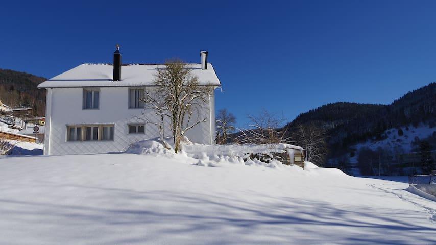 gite de la vertbruche - La Bresse - Flat