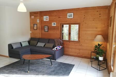 Chaleureux appartement à 5 min des stations de ski