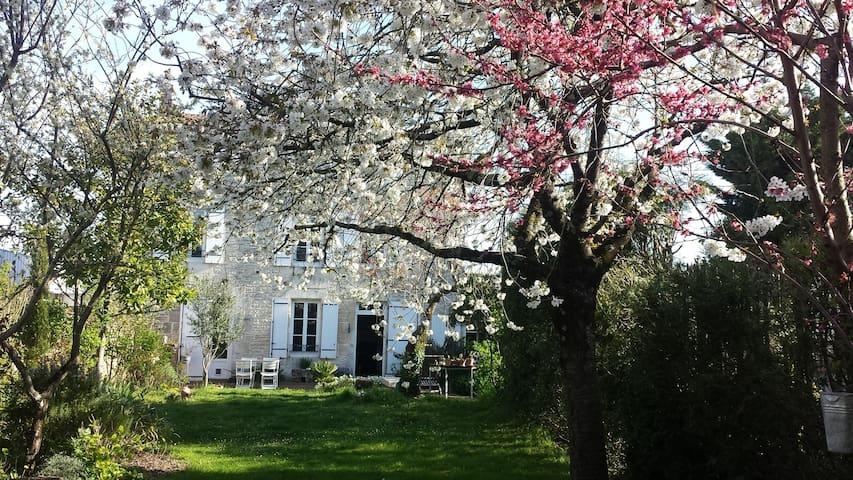 Belle chambre calme sur jardin en centre-ville - Niort - Huis