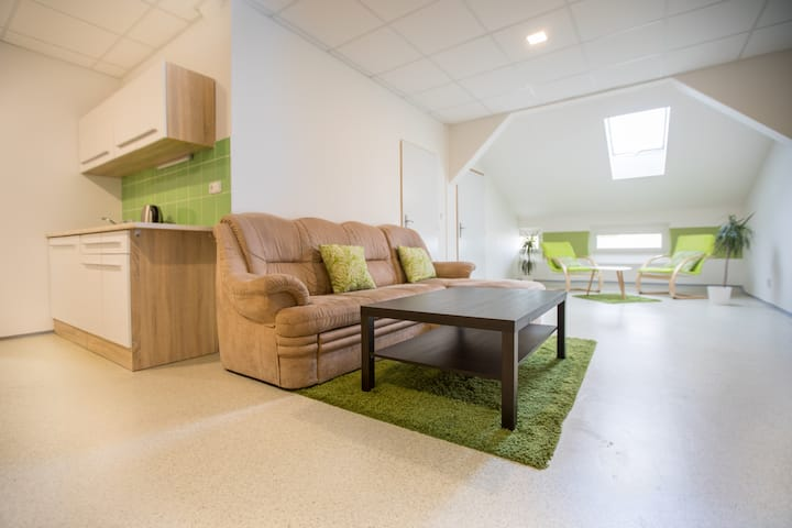 Modern family apartment for up to 5 persons