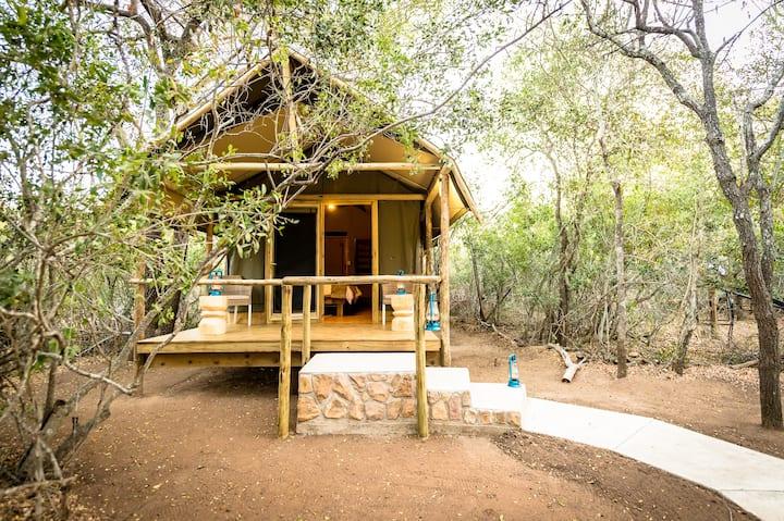 Bundox Safari Lodge - Tent with Shower 3