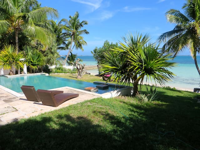 Villa with private beach and infinity edge pool
