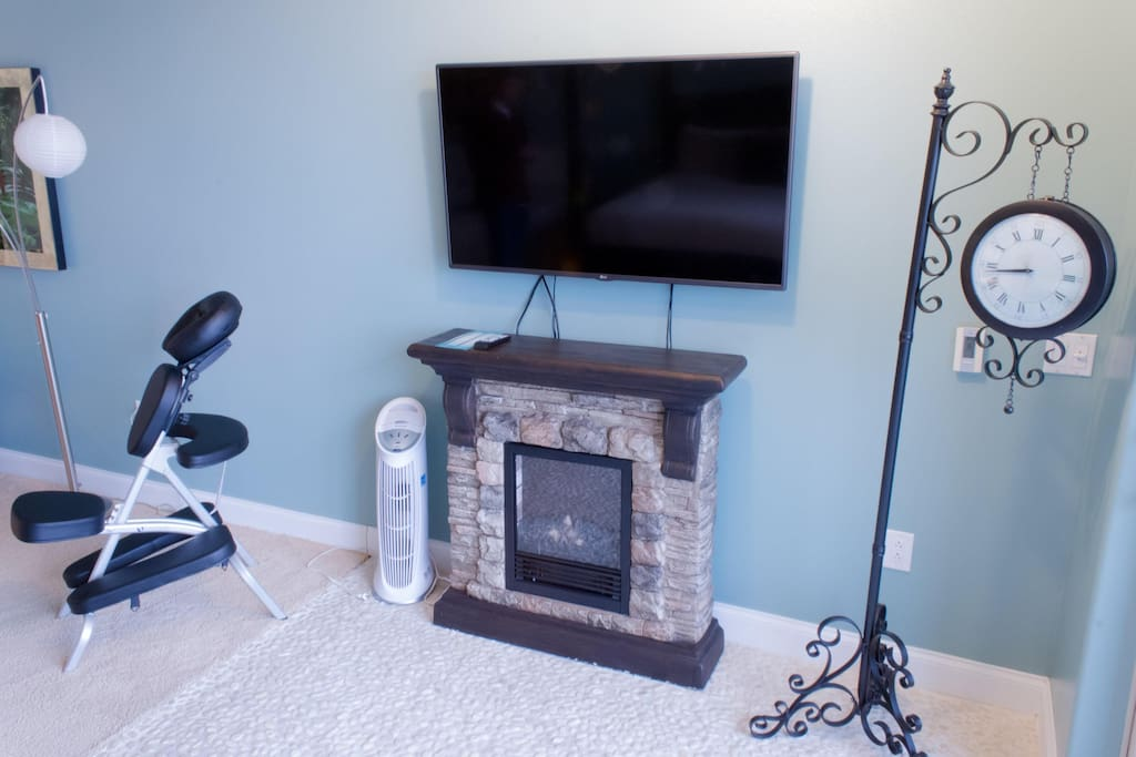 Spa Themed Suite Fireplace #409