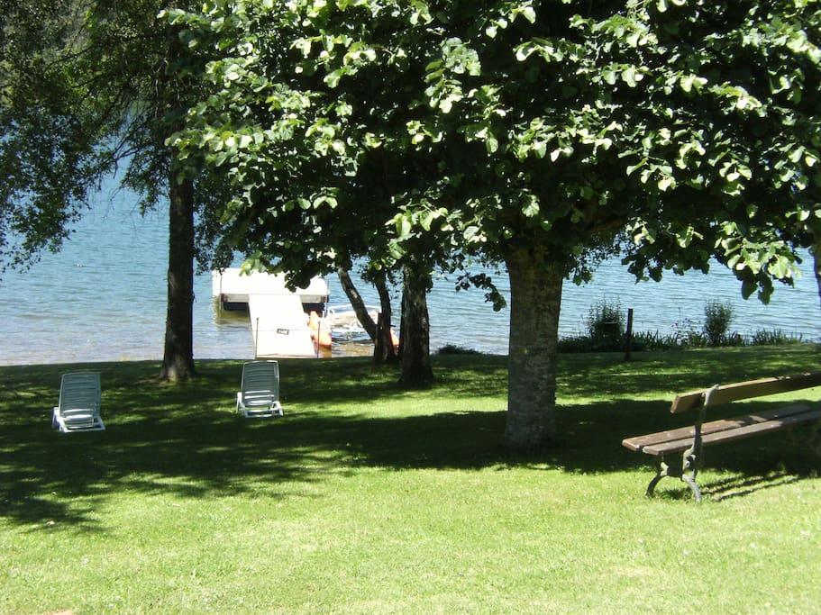 terrain au bord de l'eau avec ponton privé et pédalo