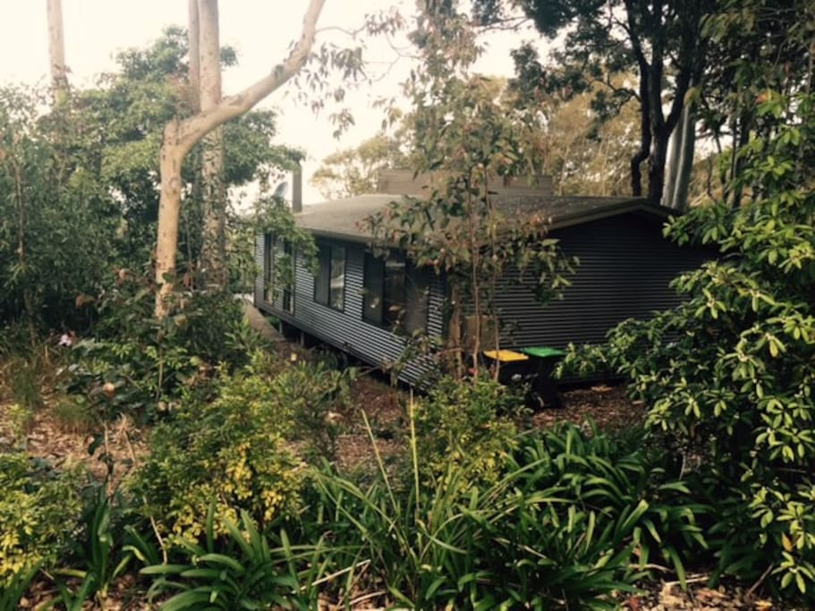 Cozy comfort nestled among the gum trees