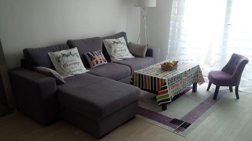 Appartement agreable et spacieux de 2 pièces - Bagneux - Appartement