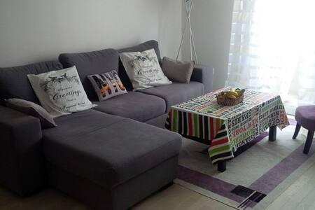 Appartement agreable et spacieux de 2 pièces - Bagneux