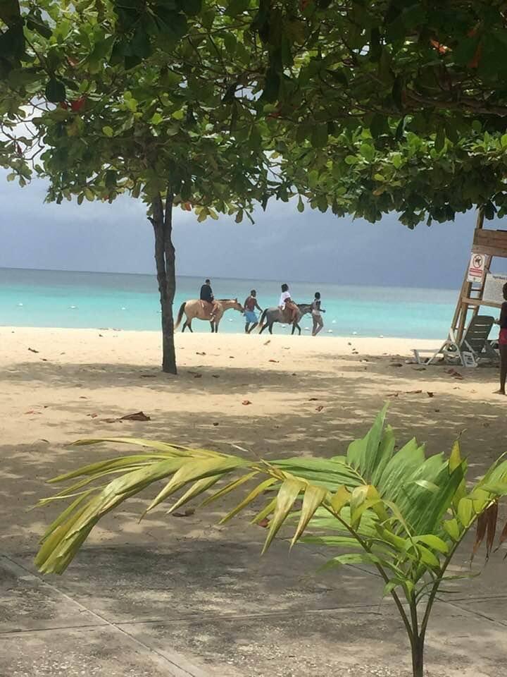 Beachfront studio Negril's 7 mile beach:Apt:136