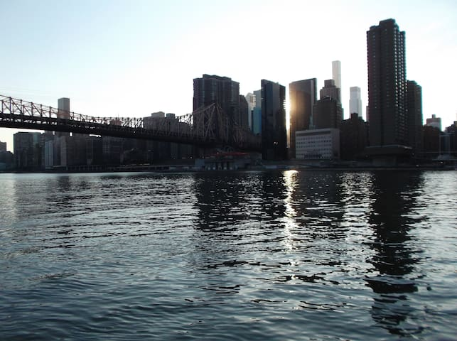 Spacious BR in large 2 BR apt in Roosevelt Island - New York - Daire