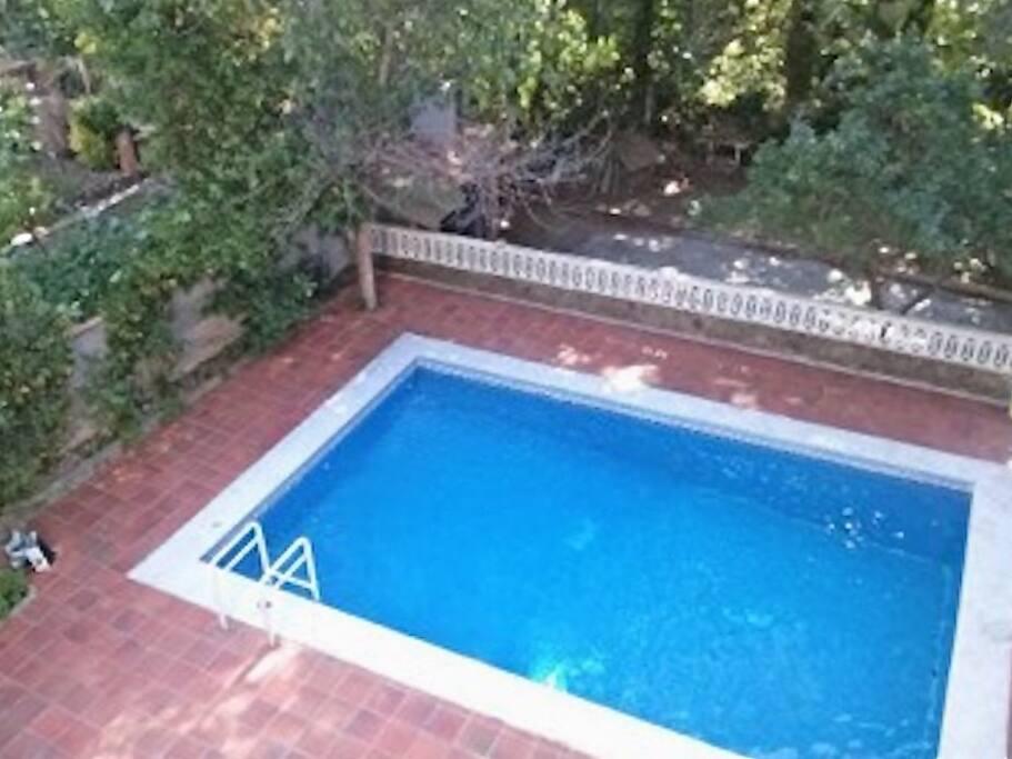 Piscine 8,50 sur 4,30m Boulodrome derrière la piscine, barbecue construit