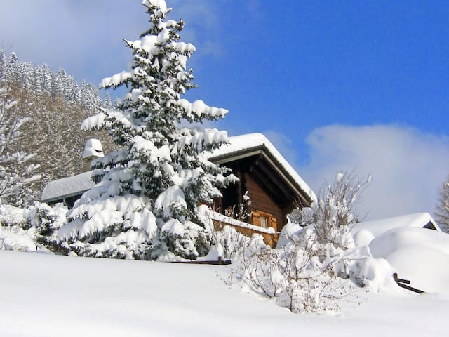 4-room house 85 m² Chalet in Moléson