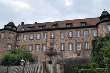 """Ferienwohnung """"Zur Ottoburg"""" im Ortsk. von Schlitz"""