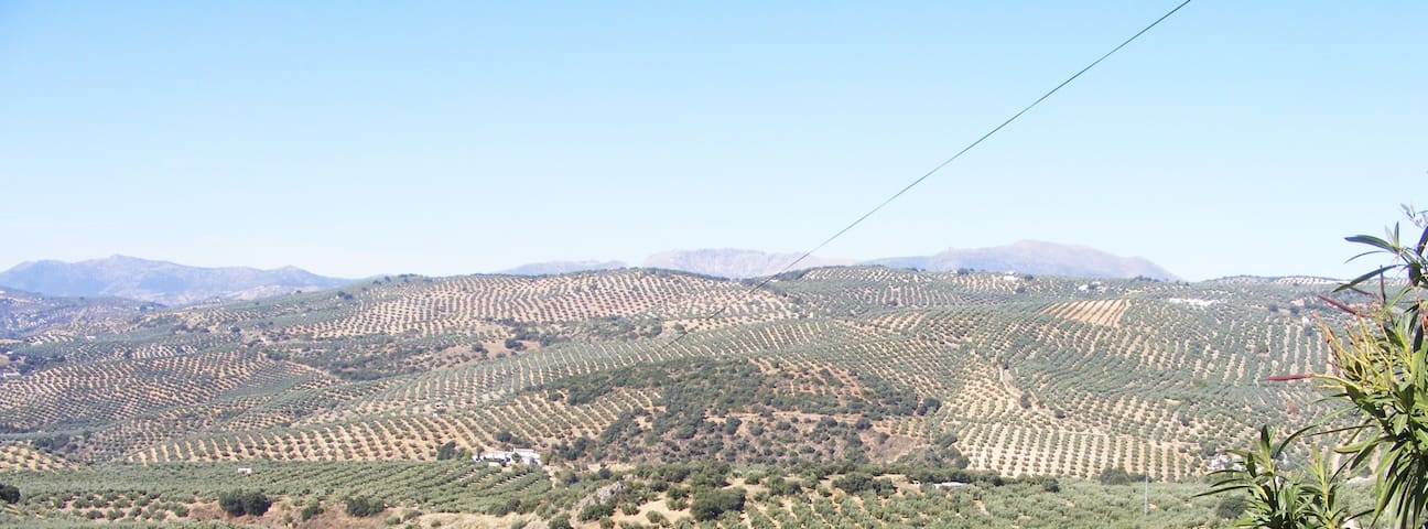 Rural Cortijo, stunning views, pool, WIFI, 5 acres - Ventorros de San José - Wohnung
