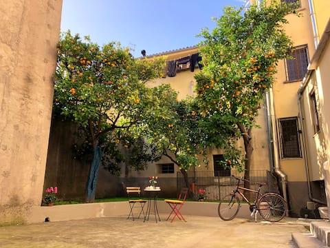 ALCENTRO Venafro Appartements orange