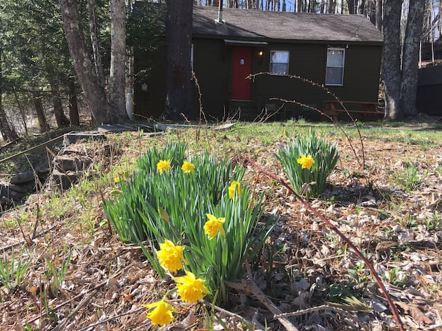 Greenfield Country Cabin - Ellenville - Chatka