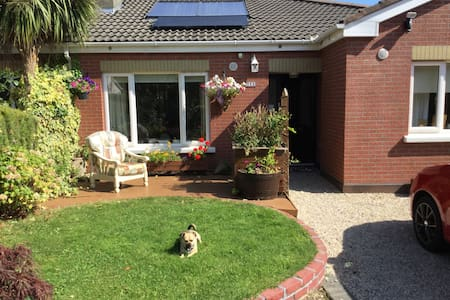 A cosy nest in the Garden of Eire - Bray - Bed & Breakfast