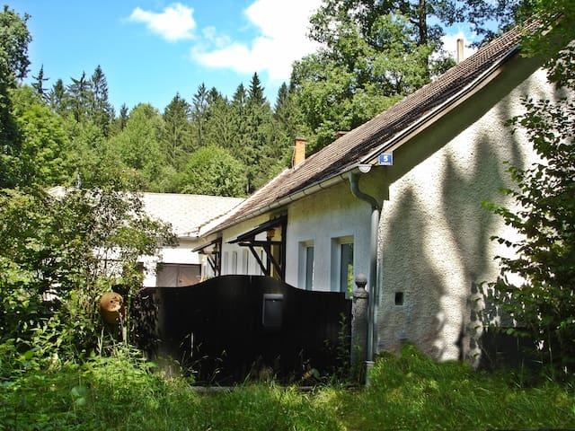 Waldhaus mitten imWald
