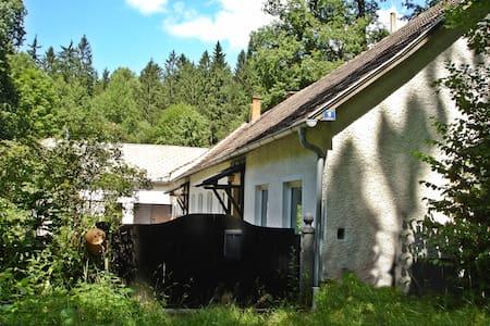 Waldhaus - Kleineibenstein - Szoba reggelivel