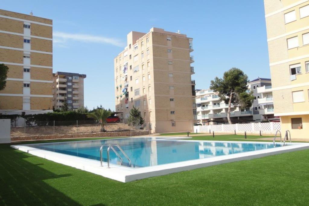 Apartments For Rent In La Zenia Spain