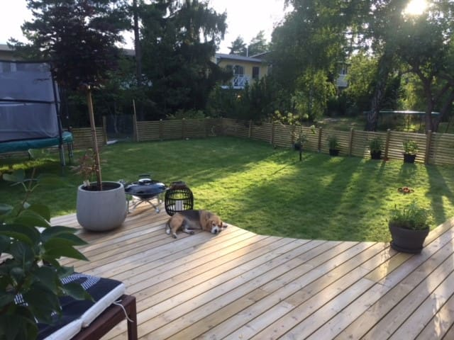 Garden with large and sunny deck