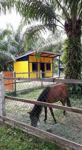 Jerami Park Homestay