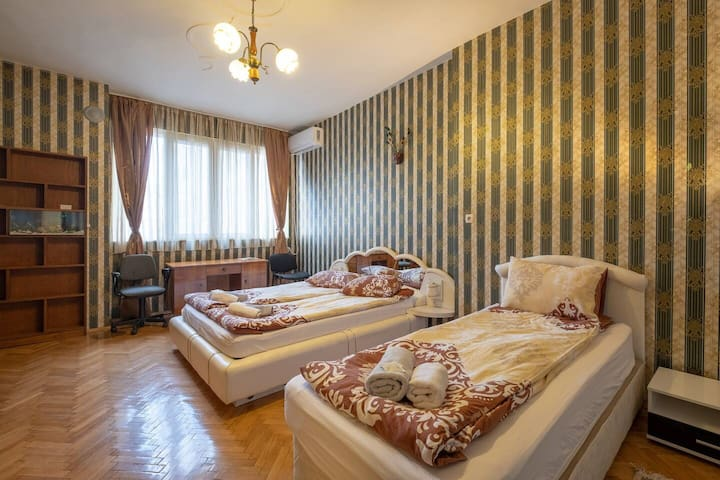 Top Center Sofia  Spacious Apart. for 10 People