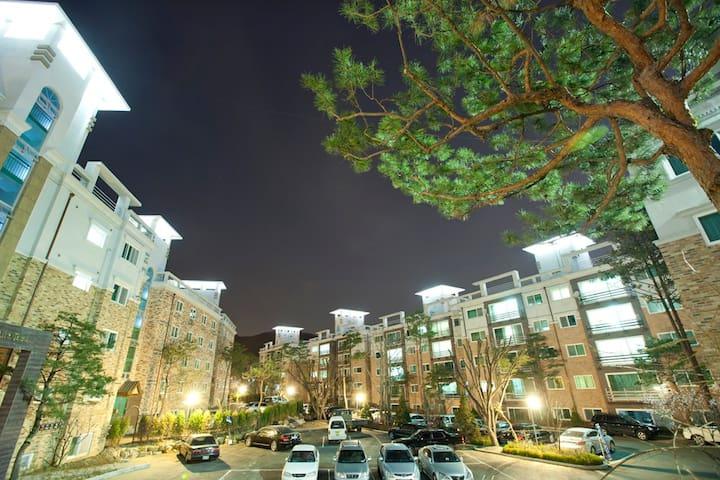 깨끗하고 편리한 합리적인 숙소 (판교 테크노밸리 10분거리) - Bundang-gu, Seongnam-si - Appartement