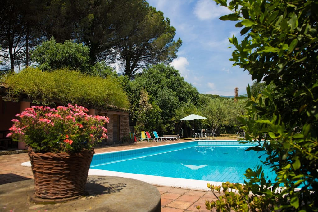The swimming pool, in common if you rent only one apartment of the VILLA DEL FILOSOFO -  SUNTRIPSICILY COM