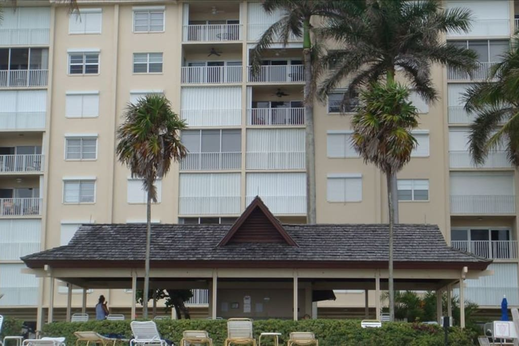 Apartment is Centrally Located in Building. Next to Palm Tree Branch-6th floor