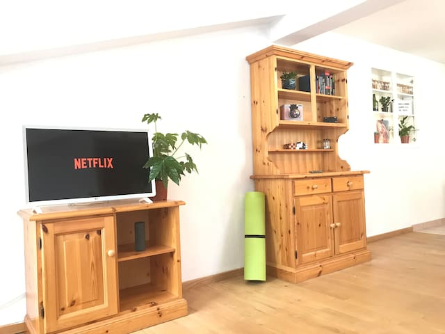 Sunny home in a mountain panorama with NETFLIX