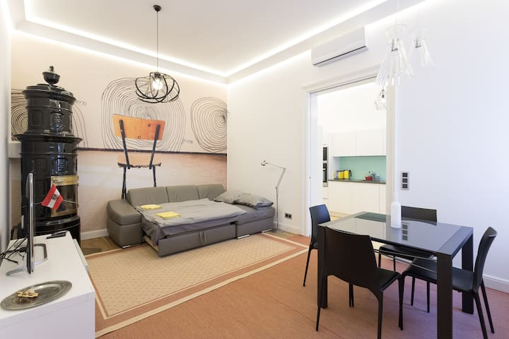 Entire designer apartment in the heart of Vienna