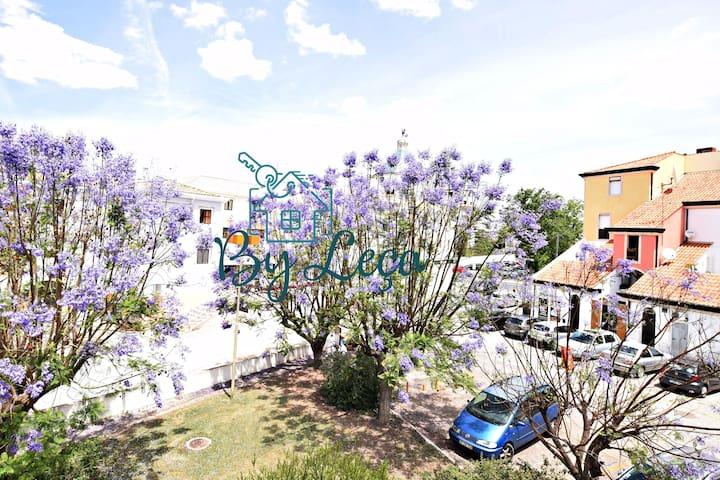 Irene's Place Marina