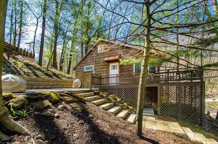 Treetop Cottage - cozy lakeview home in Mohican
