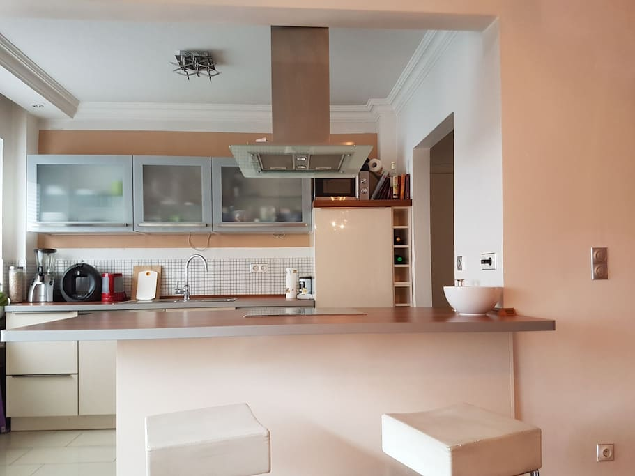 Living room with kitchenette /Open Kitchen connected with living room