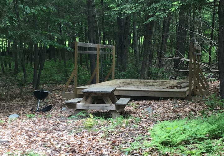 Foxtail Farm Stay: Woods Site