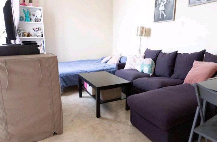 Studio cosy (Beaugrenelle / Dupleix / Tour Eiffel)
