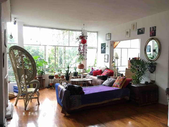 Bright room in spacious apt Condesa