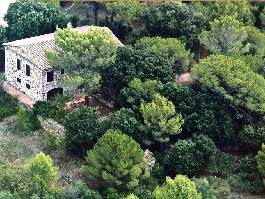 maison sur terrain arboré d'environ 1 hectare