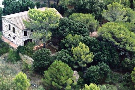 Maison cévenole sur terrain boisé - Bagard