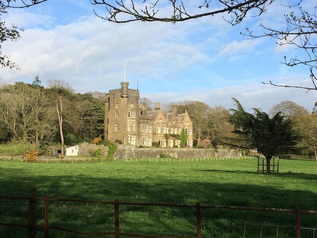 Large Victorian House near Llanelli - Pwll - Дом