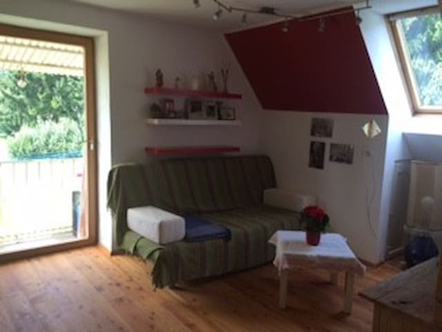 Gemütliches Zimmer in ruhiger, grüner Lage - กราซ - บ้าน