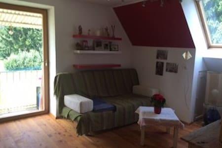 Gemütliches Zimmer in ruhiger, grüner Lage - Graz